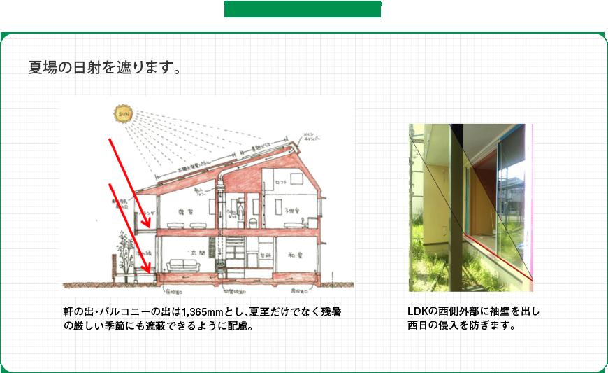 和らぎの家では: 夏場の日射を遮ります。